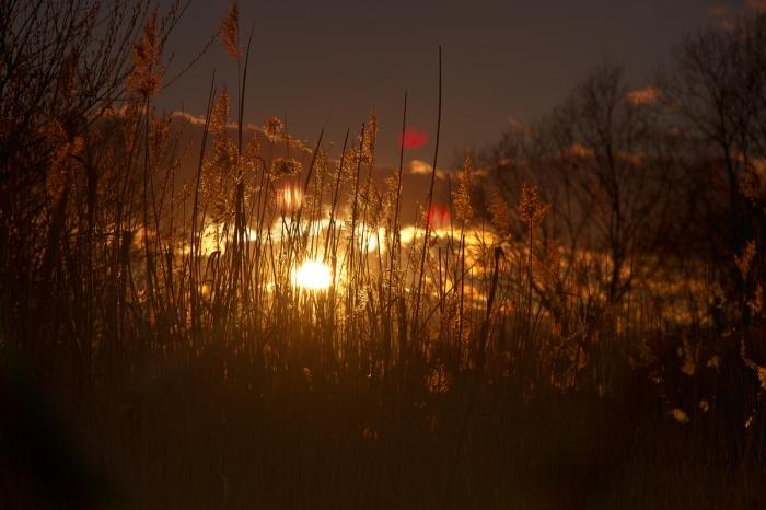 Sonnenuntergang-1605